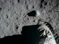 Moon Landing Buzz goes to twitter